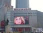 惠州LED显示屏